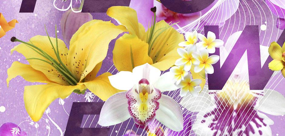 wildflower02