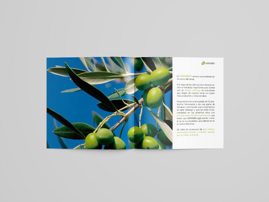 olivar02